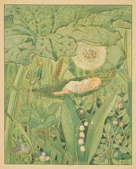 エルサ・ベスコフ画から「おやゆびひめ」 - Books