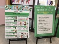 UMAJOスポット@新潟 - ダートコースを馬なりで(仮)