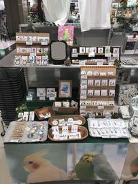 東急ハンズ博多店5F 『ことりマルシェinHAKATA』好評開催中です!9月20日迄の開催です - 雑貨・ギャラリー関西つうしん