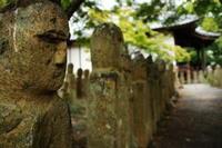 加西市羅漢寺 - yutorieの庭②