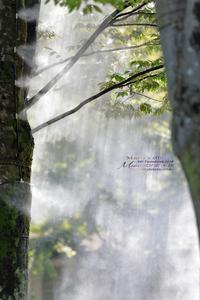 まゝに/8月の散策武蔵丘陵森林公園2 - Maruの/ まゝに