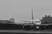 モノクロだからこそ ~函館空港15th~ - 自由な空と雲と気まぐれと ~ from 旭川空港 ~