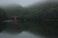 8月28日 霧の朝⑧ 碓氷湖 - 光画日記