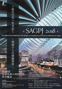 2018 日本外来小児科学会年次集会 - SSPE 青空の会のブログ