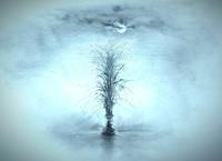 《 暦長月九月 》 - 『ヤマセミの谿から・・・ある谷の記憶と追想』