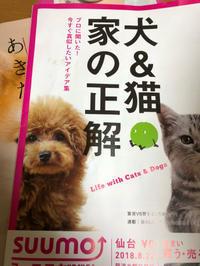 理想の住まい - 愛犬家の猫日記