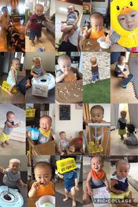 1歳1ヶ月〜1歳2ヶ月まとめ - 乳姉と子牛の日記