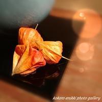 「美味しい記念日」うかい竹亭 - こころ絵日記