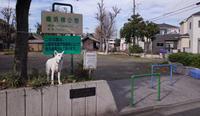 Vol.1382 塩浜橋公園 - 小太郎の白っぽい世界