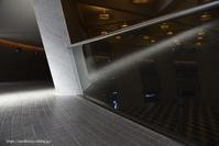 reflection - Noriko's Photo  -light & shadow-