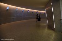 スロープ - Noriko's Photo  -light & shadow-