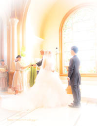 wedding♡ - ぽとすのくずかご