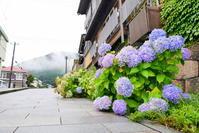 紫陽花彩る函館の街 - ぶらり休暇