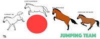 障害馬術団体銀メダル! - おがわじゅりの馬房