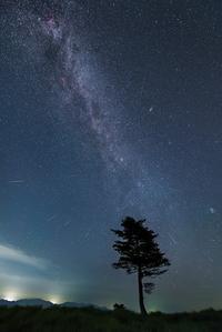ペルセウス流星群の夜 - Qualia