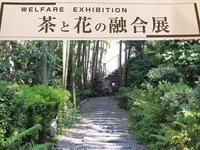 茶と花な融合展 - 花伝からのメッセージ           http://www.kaden-symphony.com