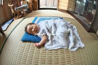 こんにちは、赤ちゃん - nyaokoさんちの家族時間