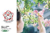 9/1(土)〜9/2(日)は、東急ハンズ姫路店に出店します! - 職人的雑貨研究所