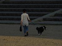 散歩道 - 老いの小文