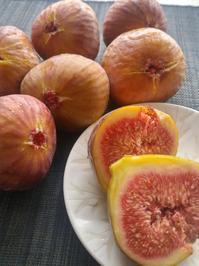 母の命日 - 料理研究家ブログ行長万里  日本全国 美味しい話