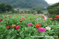 「ドライブとお散歩」津久井湖から高尾山口 - こころ絵日記