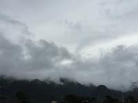 雨のアブラハムダービー - はまあやのくらし