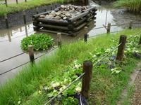 台風21号が心配 - Longhill Net Blog