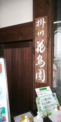 掛川花鳥園→くずしゃり→太助 - おでかけごはん