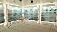 氷の水族館 ・宮城  ◆東北の旅 9◆ - Emily  diary