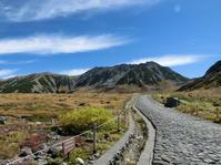 紅葉の時期を教えてください - 旅する富山