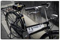 散歩中京区辺り-5 - Hare's Photolog