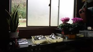おはなとわたし  - 長野県上田市と東御市の境 タダのバイク屋 Garage Giraffe ガレージ ジラフ   Harley Davidson ハーレー