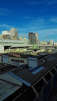 新世紀大江戸百景48東京スカイツリー遠望 - 風の香に誘われて 風景のふぉと缶