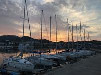朝の港。 - 四代目志賀社長のブログ