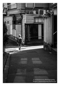 下校 - ♉ mototaurus photography