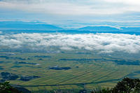 越後平野と日本海(弥彦山より) - くろちゃんの写真