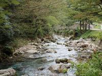 『晩夏の渓流(円原川の風景)』 - 自然風の自然風だより
