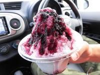 今年食べたかき氷@西条市 - Meenaの日記