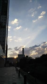 ●宇宙の流れに乗って、デトックス、デトックス♪ - 倫子のフラワーエッセンス・カウンセリング(大阪・スカイプ)