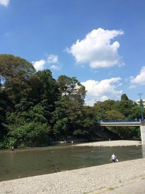 秋川渓谷 & コンロ周りに棚をちょい足し - そらまめのおうち