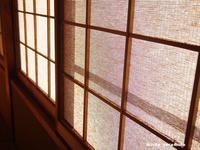 暑い秋 - HAIKU/autumn PHOTO