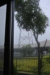 57年ぶりの暴風雨 - のんきなとうさんの蓼科偶感