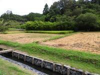 めぐる季節 - 千葉県いすみ環境と文化のさとセンター