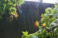 台風21号 - 写真を主とした日記です