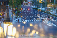 東京の街角で - あおいくまの子守歌