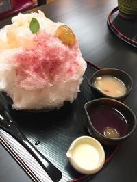 河口湖のかき氷  埜蜜喜(YAMITSUKI) - うひひなまいにち