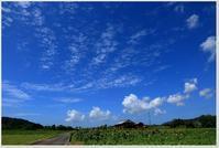 台風一過の爽やかな空 - ハチミツの海を渡る風の音
