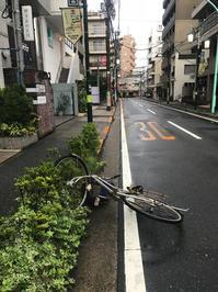 台風一過 - 00aa恵比寿美容室  Hana★癒し系ヘアサロン★《ヘアー・ハナ》