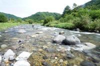 雨に悩まされた渓流釣行 - ブラッドノット/岡田裕師のフライフィッシング ブログ