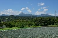 9月5日 妙義山とネギ畑 - 光画日記